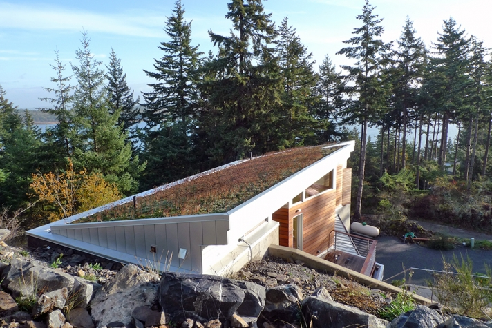 Lummi Island Green Roof House-Roof
