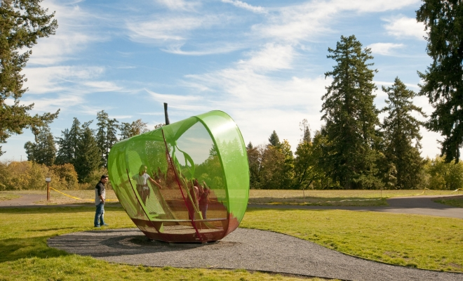 It was a thrill to make a visit to Orenco Woods Nature Park this last weekend. The fall sunlight was warm and low and the park was teeming with families playing, runner and bikers and folks enjoying the nature – there were even two deer grazing in the fresh grass […]